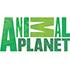 Animal Planet - Позновательные тв каналы